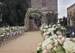 Provincia di Brindisi - Matrimonio nell'uliveto